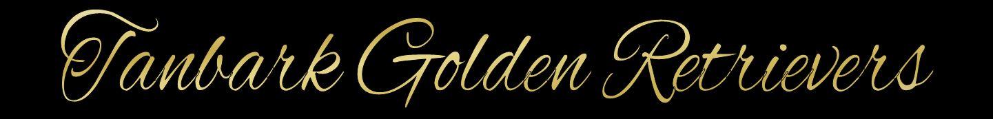 Tanbark Golden Retrievers